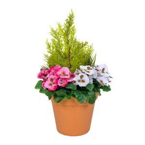 Terracotta Artificial Plastic Patio Planter Dark Pink & White Pansies & Cedar Topiary