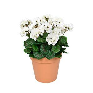 Terracotta Artificial Plastic Patio Planter White Geraniums