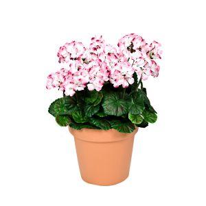 Terracotta Artificial Plastic Patio Planter Pink Geraniums