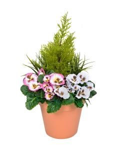 Terracotta Artificial Plastic Patio Planter with Pink & White Pansies & Cedar Topiary