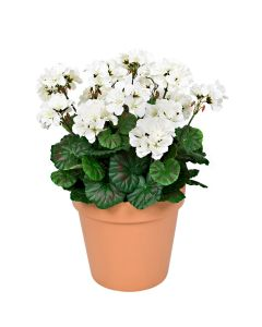 Terracotta Artificial Plastic Patio Planter White Geraniums