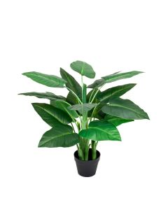 Artificial 3ft/90cm Real Touch Calla Lily Tree in Pot