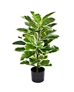 Artificial 75cm Real Touch Rubber Plant in Pot